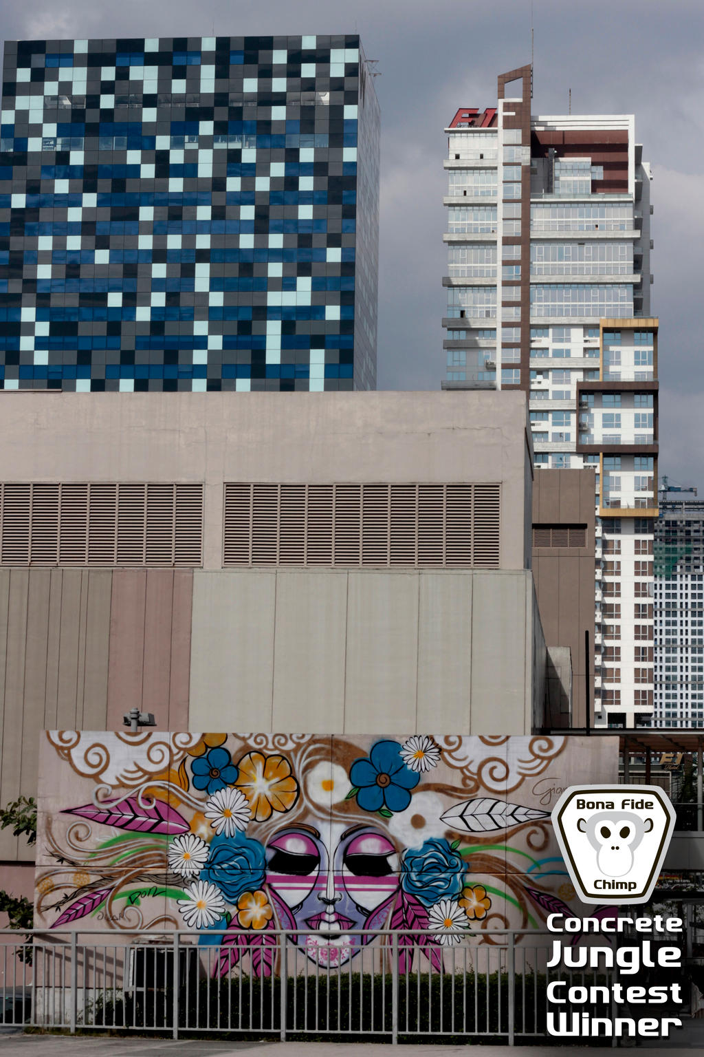 Concrete Jungle Contest Winner 2 of 2 by BonaFideChimp