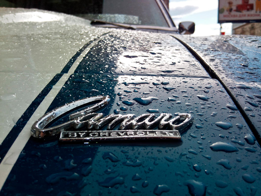 camaro_badge_by_overmoder-d4f1pw6.jpg
