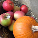 O is for organic october