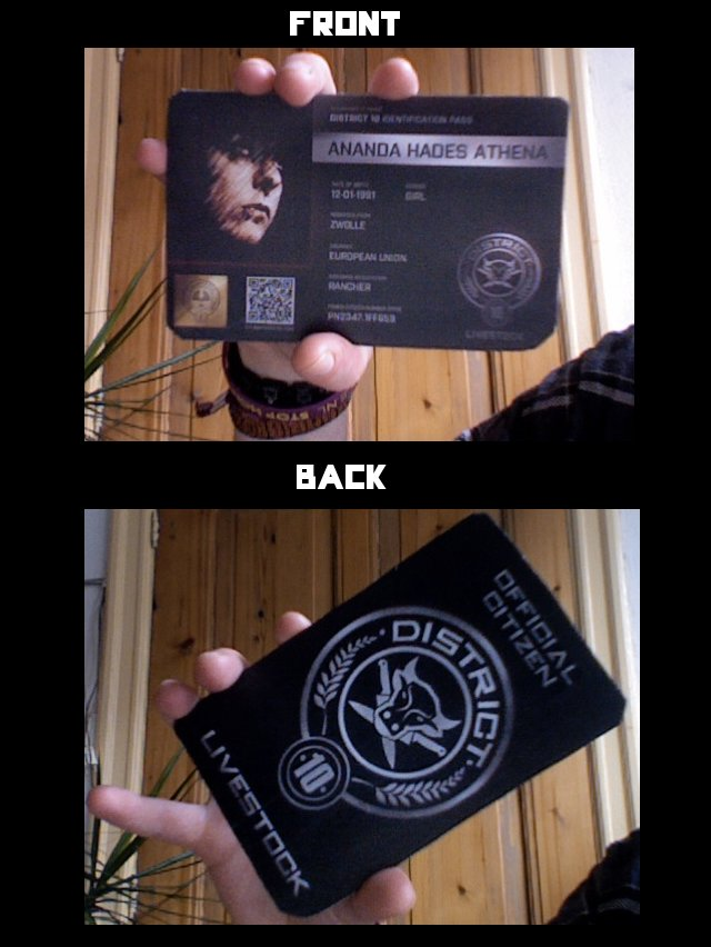 Panem D10 card by CriminalMasterbrain