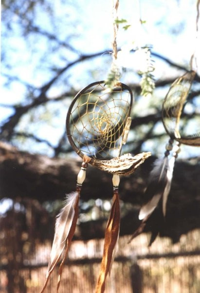 Who Created The Dream Catcher Devil's Clawunicorn plant seed pod Dream catcher by Createdby 33