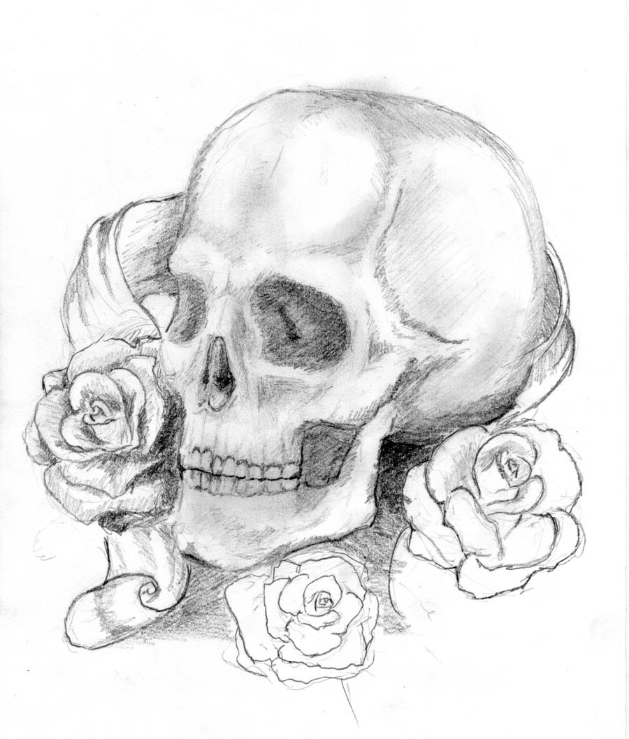 This is a picture of Sweet Rose And Skull Drawing
