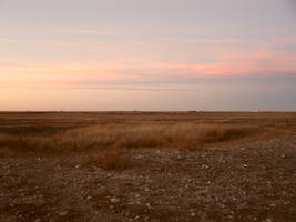 Sunset Pasture 1 by ashleyduschl