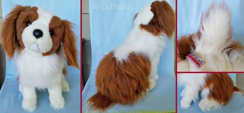 Douglas Sadie King Charles Spaniel (tail defect?)