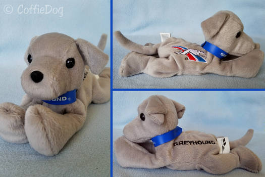 PST Greyhound Bus Mascot Beanie Promo Plush