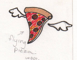 Flying Pizza by shadkat