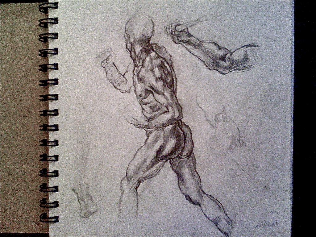 Michelangelo anatomy study by ZeroPointPolygon on DeviantArt