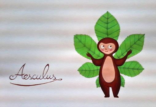 horse-chestnut aesculus