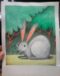 Hare by wannaD