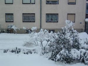 '... let it snow ...'
