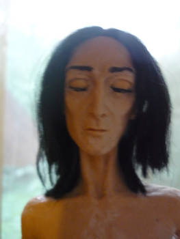 Snape: Dream2