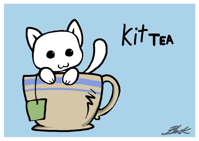 کافه گربه ها در امریکا