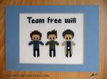 Team Free Will cross stitch