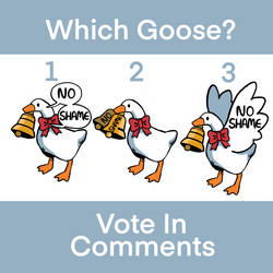 No Shame Goose Designs - Please Vote
