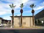 3 Palms Apartmentd