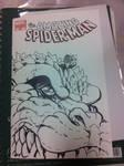 Spiderman sketch cover