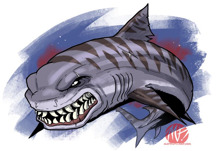 Shark hybrid drawing - photo#36