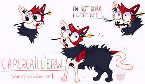 Capercailliepaw