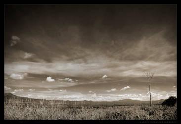 Buena Vista by atomicpixel