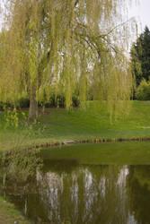 The Duck Pond II by AndokaStock