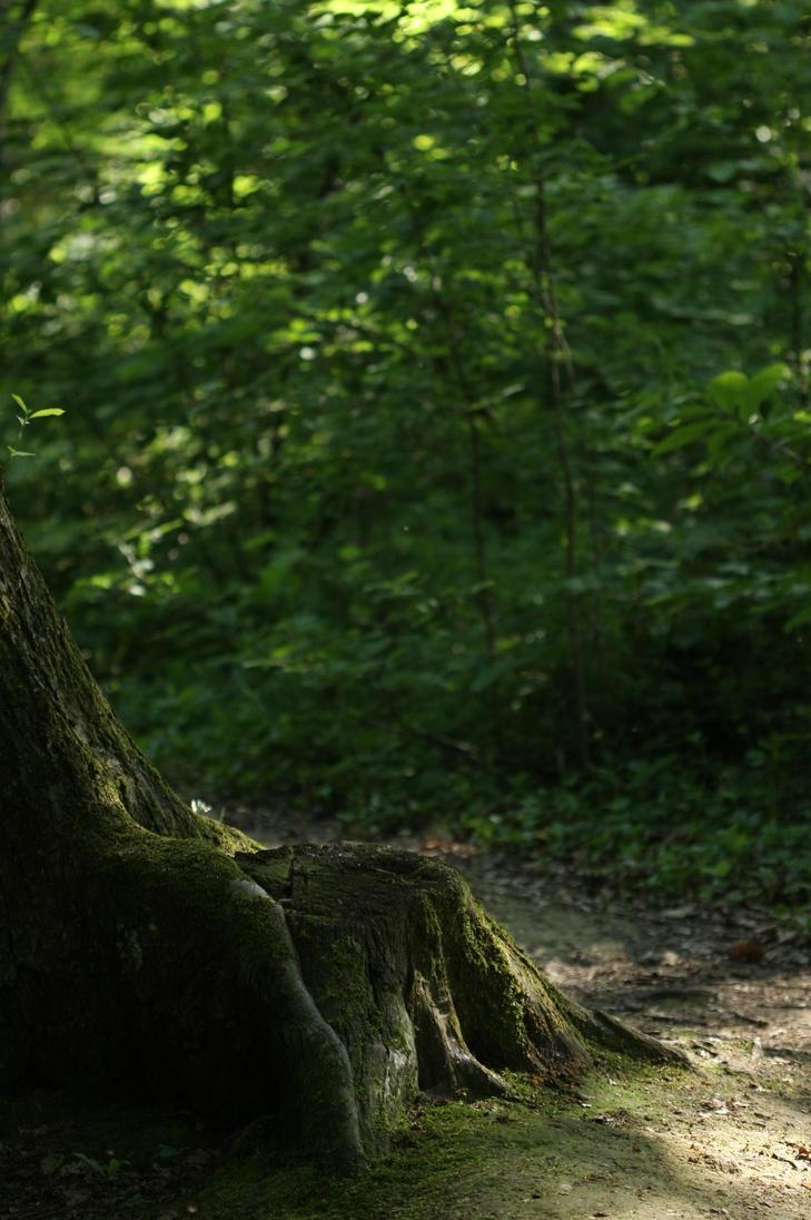 Natural Chair by AndokaStock