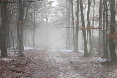 Autumn Mist. by AndokaStock