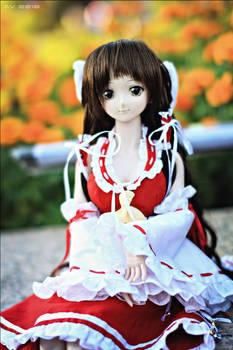 Dollfie Reimu