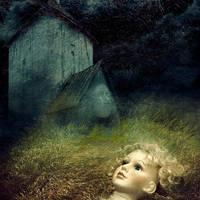 Wind in a grass by admvi