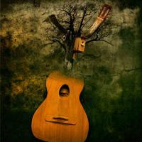 Music by admvi