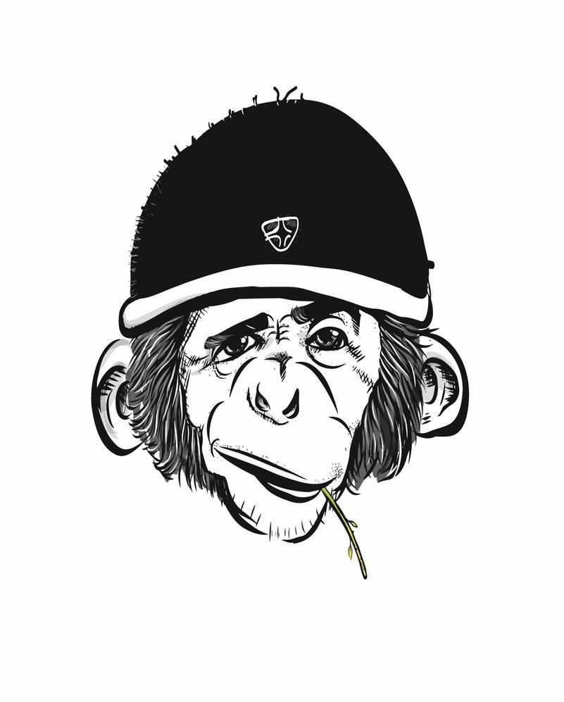Monkey by abhijeetart