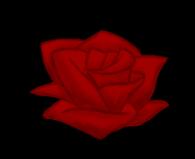 It's a rose! KABOOM! by DarkBloodPro