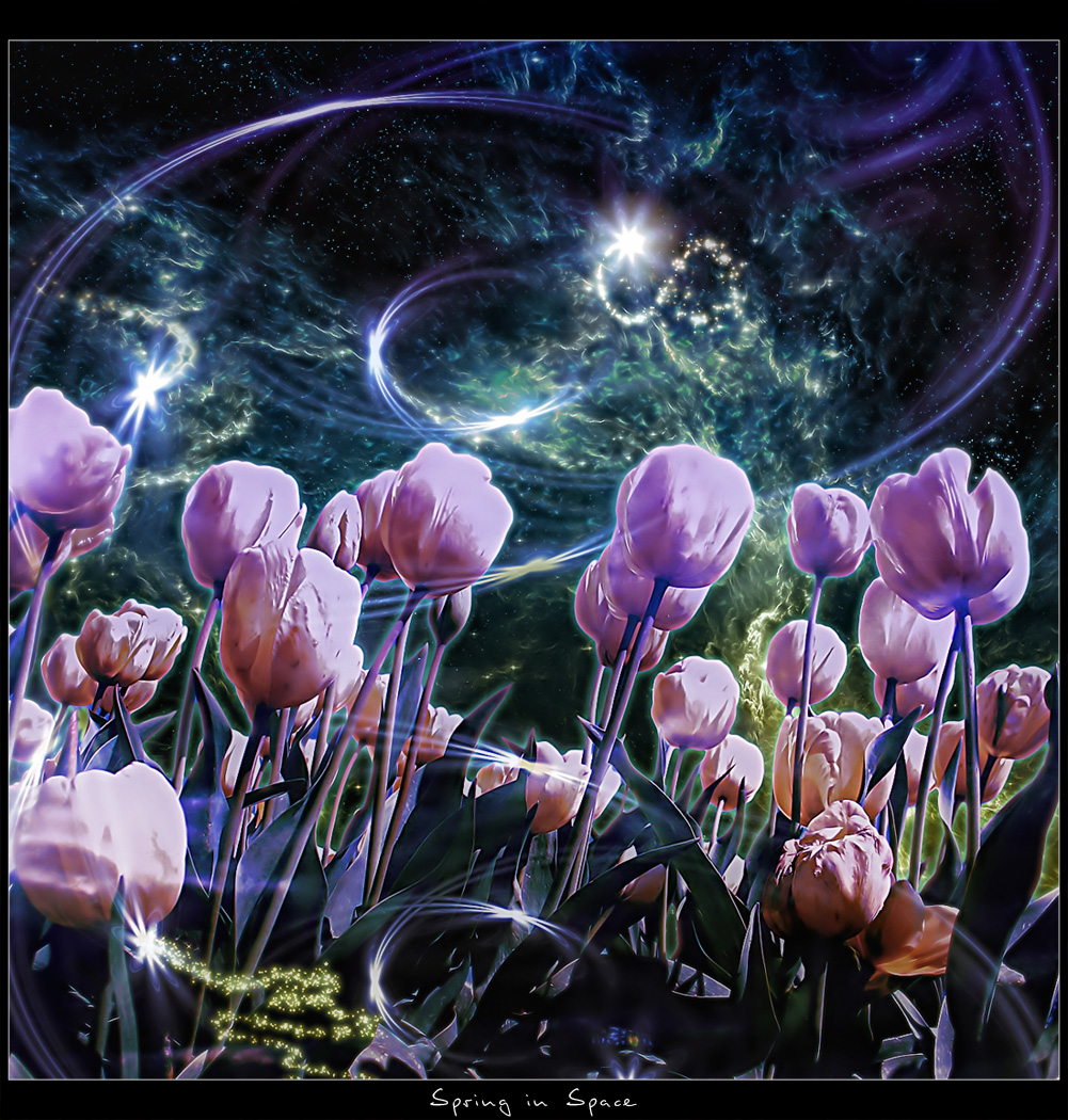Spring in space