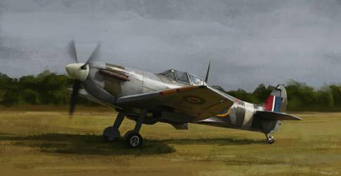 spitfire by fdasuarez