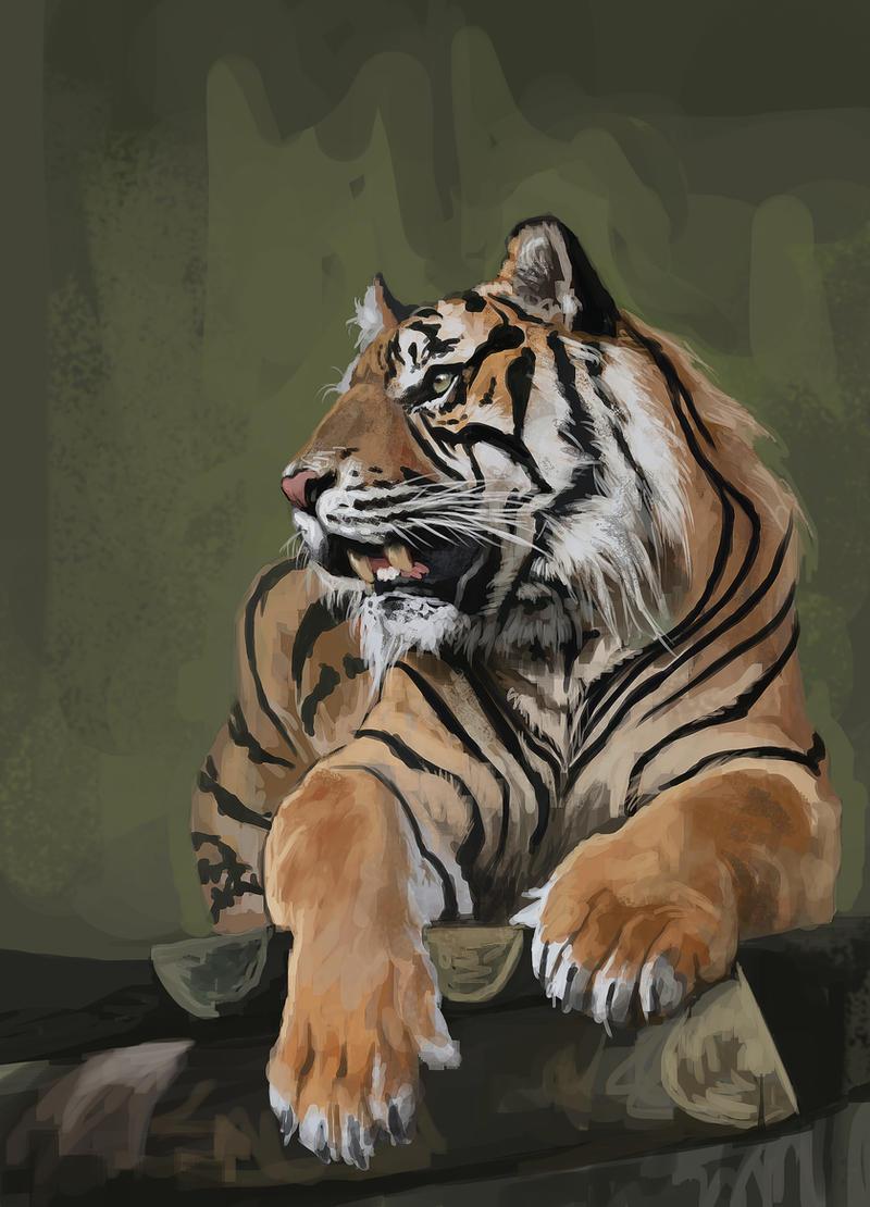 Tigerrr by fdasuarez