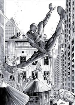Spider Man - Commission