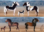 Horse adopt auction OPEN by Iollite