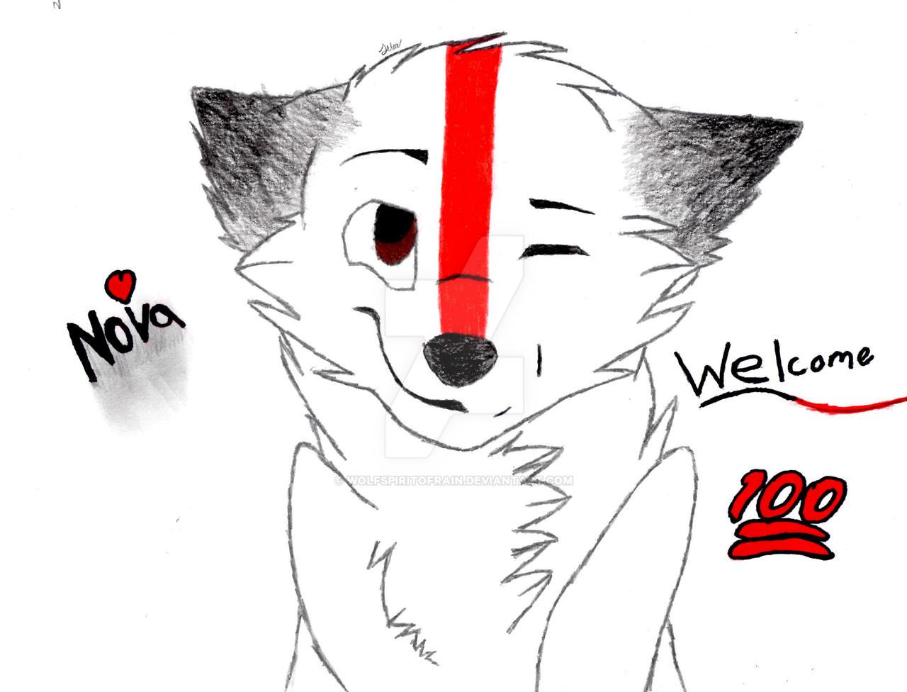 Wolfspiritofrain's Profile Picture