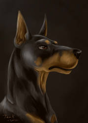 Doberman by Karvaferrari