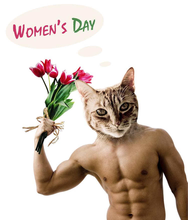 Women's Day Cat by kva-v-kube on DeviantArt