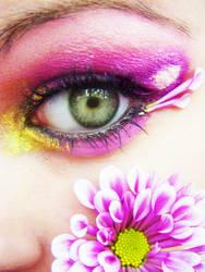 Chrysanthemums by MissHayleyBee