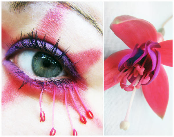 Fuschia by MissHayleyBee