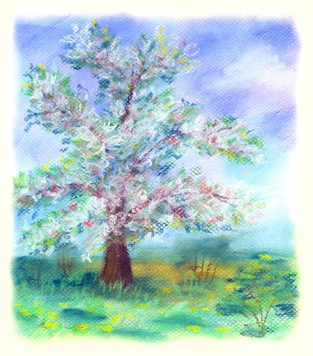 Tree by jkBunny
