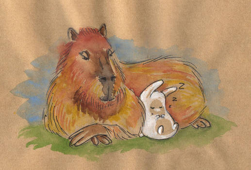 Capybara and bunny