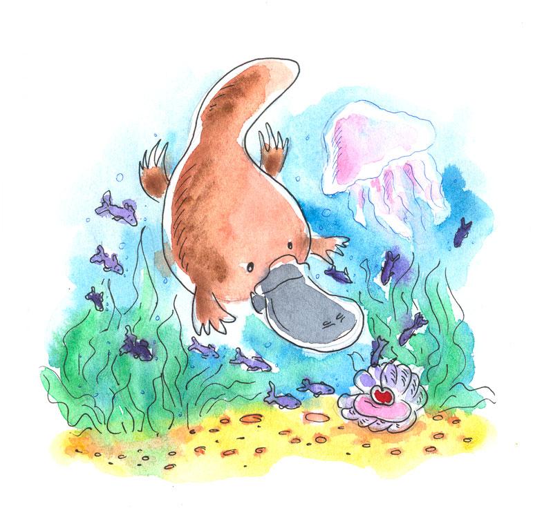Platypus by jkBunny