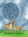 Deer patterns