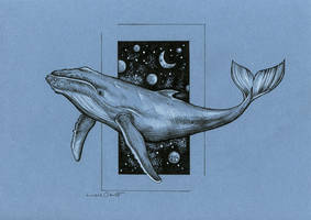 Universal whale by LucieOn