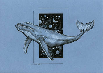 Universal whale