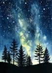 Night Forest II