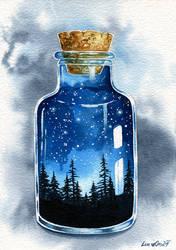 Night in a Bottle