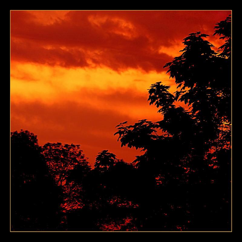 Red Sunrise by skarzynscy
